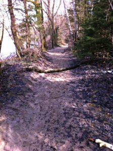 Sandpfad auf den Isartrails