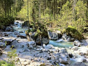 Fluß durch den Zauberwald