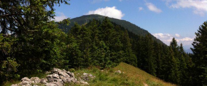 Lauftour: Heimgarten Vertical
