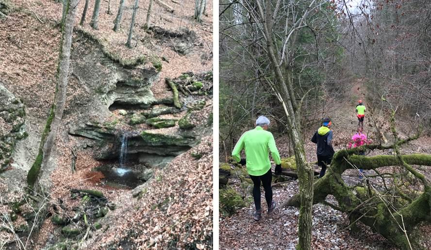 Wasserfall und Waldpfad auf dem Andechs Expert Trail