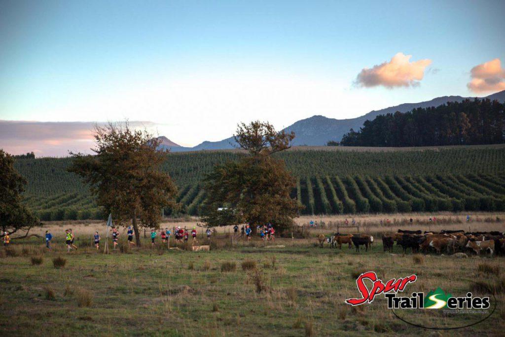 Trail Series: Weinberge