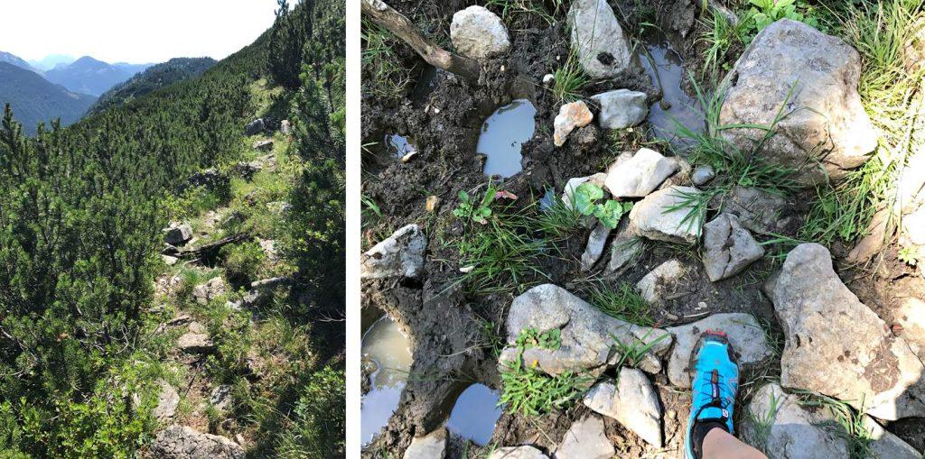 Trailrunning Blauberge, technische Passagen