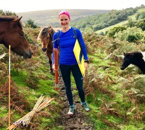 Kursmarkierung mit Dartmoor-Ponies