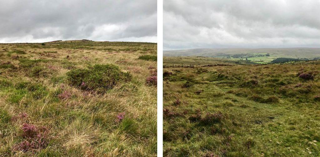 Dartmoor-Landschaft