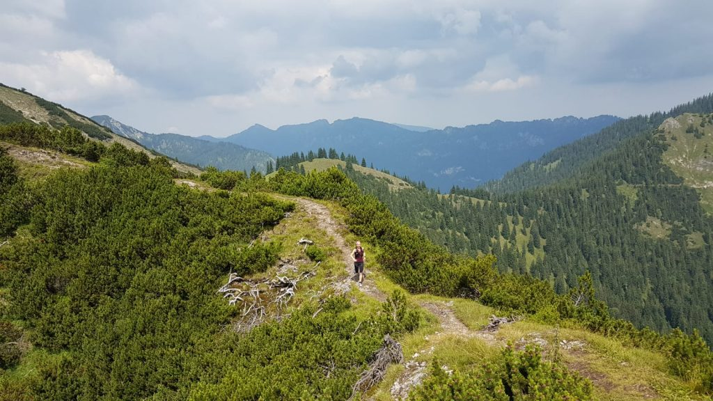 Trailrunning am Brünstelkreuz