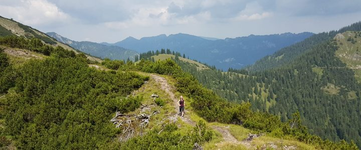 Trailrunning-Tour über Brünstelkopf und Felderkopf