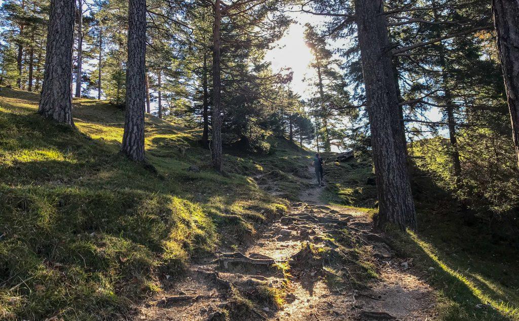 Trail auf dem Salober