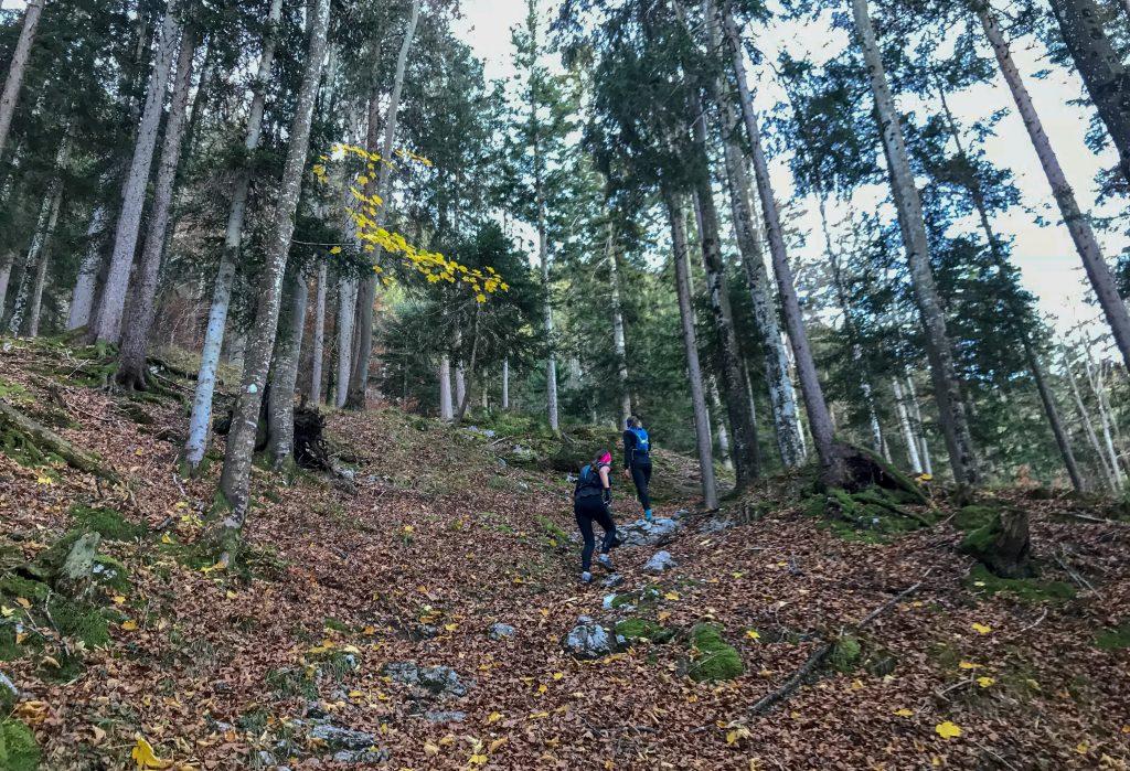 Uphill zum Salober beim Kini Trail