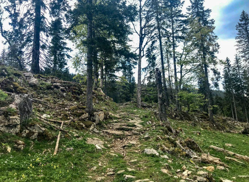 Aufstieg zum Mont Tendre