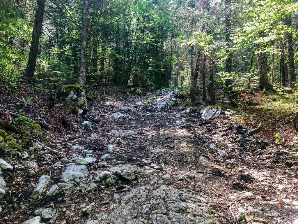 Steiniger Trail auf dem Weg zum Mont Tendre