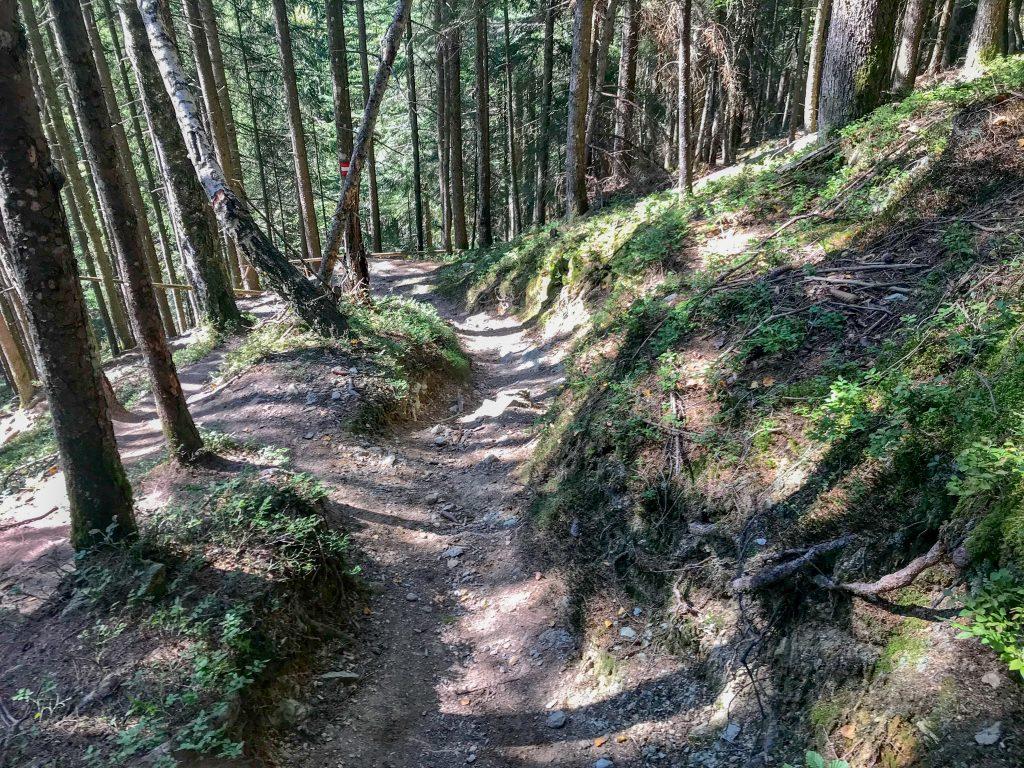 Downhill beim Gamstrail