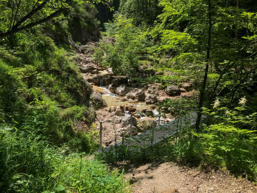 Brücke auf dem Alpgartensteig