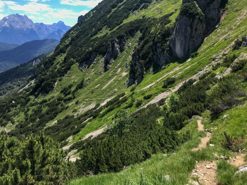 Trail vom Dreisesselberg Richtung Steinerne Agnes