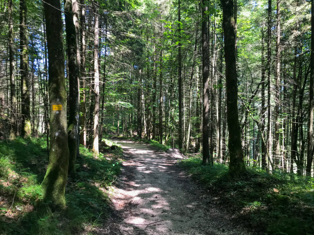 Trailrunning auf dem Salzalpensteig