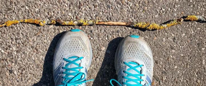 Lauftraining ohne Wettkampf