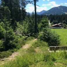 Ramsau Marathon: Landschaftslauf am Dachsteingebirge